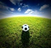 Stadion för fotboll för fotbollfält på sporten för blå himmel för grönt gräs Arkivbilder
