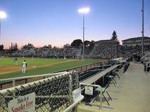 Stadionljus på en basebollarena Fotografering för Bildbyråer