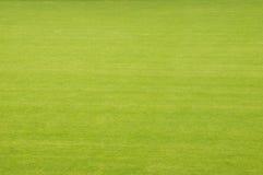 Stadiontorva Fotografering för Bildbyråer