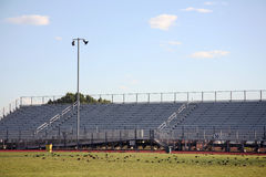 Stadium bleachers 2 Stock Photography