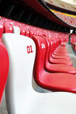 Stadium Chair. A white chair in middle of red chairs Royalty Free Stock Image