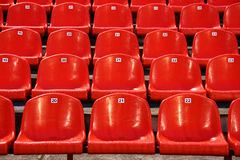 Stadium chairs Stock Image