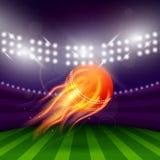 Stadium Of Cricket Night Royalty Free Stock Photos