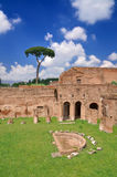 Stadium of Domitian on Palatine Hill Royalty Free Stock Photos