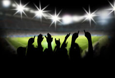 Stadium with fans. Soccer field at the night with fans Royalty Free Stock Images