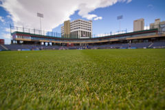 Stadium Grass Royalty Free Stock Photography