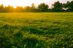 Stadium grassfield in morning sunlight. Just a photo of a stadium grassfield in morning sunlight Royalty Free Stock Image