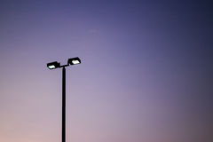 Stadium lights. Turned on and some insects at night Royalty Free Stock Images