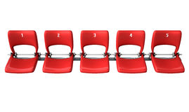 Stadium Seats Section Royalty Free Stock Photography