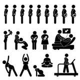 Stadium van het Proces van de zwangerschap het Zwangere Royalty-vrije Stock Foto's