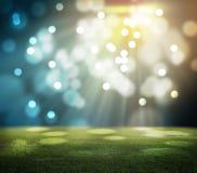 Stadium w światłach ilustracji