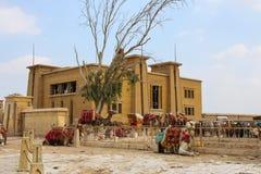 Stado wielbłądów odpoczywać gizzard Egipt Obrazy Royalty Free
