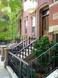 stads- amerikansk grannskap Royaltyfri Fotografi