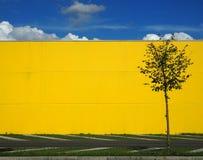 stads- bakgrund Blå himmel med moln ovanför en ljus gul vägg och ett enkelt träd fotografering för bildbyråer