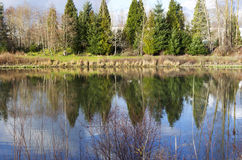 Stads- damm i Portland Oregon. Fotografering för Bildbyråer