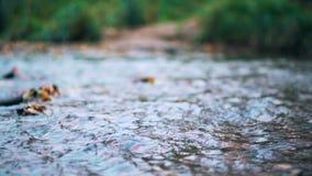 Stads kleine rivier stock videobeelden