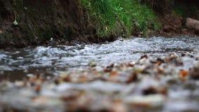 Stads kleine rivier stock footage