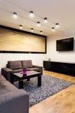 Stads- lägenhet - soffa i vardagsrum arkivbilder
