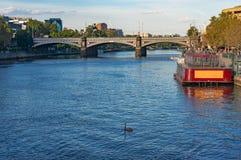 Stads- landskap med floden och den svarta svanen Royaltyfri Bild