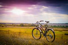 Stads- lilacykel på en landsväg royaltyfria foton