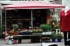 Stads- liv i Amsterdam 13 Arkivbilder