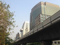 Stads- moderna byggnader i CBD Arkivbilder