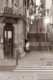 stads straat Plentzia Royalty-vrije Stock Foto