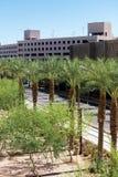 Stads- streetscapes och byggnader i i stadens centrum Phoenix, AZ Royaltyfria Foton