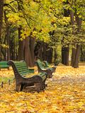 stads- tom park för bänk Arkivfoto