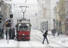 Stads- transport i vinter Snöfall i Ungern Miskolc stad 15 febrila 2010 Royaltyfria Bilder