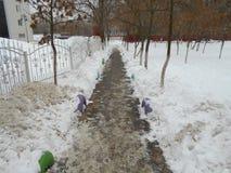 Stads- väg i snön Arkivfoto