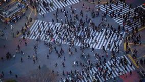 Stads Voetverkeer Shibuya Tokyo stock video