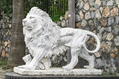Stadsbeeldhouwwerk van een leeuw en een leeuwwelp bij de ingang Lokaal oriëntatiepunt Zachte nadruk stock fotografie