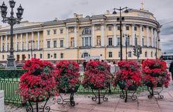 Stadsblommor av St Petersburg, Ryssland royaltyfri fotografi