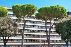 Stadsbomen Rome EUR Stock Afbeeldingen