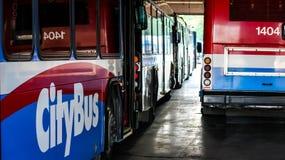 Stadsbussar som tillsammans parkeras Fotografering för Bildbyråer