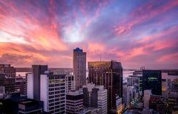 Stadscentrum met de hoge stijgingsbouw tijdens zonsondergang Royalty-vrije Stock Foto's
