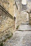 stadsdromefrance laval le medeltida poet Royaltyfri Fotografi