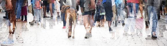 Stadsgang, dubbele blootstelling van een grote menigte van mensen en een hond, royalty-vrije stock afbeelding