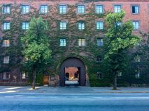 Stadsgata- och yttersidategelstenbyggnad som täckas med den gröna murgrönan Fotografering för Bildbyråer