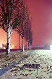 Stadsgata på natten. royaltyfri bild
