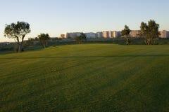 stadsgräs till Royaltyfria Foton