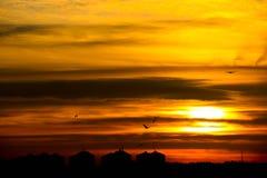 Stadshorizon bij zonsondergang Stock Afbeelding