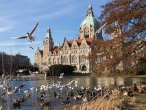 Stadshus Hannover Arkivfoto