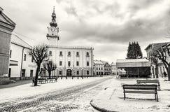 Stadshus i den huvudsakliga fyrkanten, Kezmarok, Slovakien som är akromatisk Fotografering för Bildbyråer