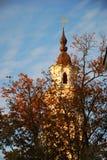 Stadshustorn i Kaunas, Litauen Arkivbilder