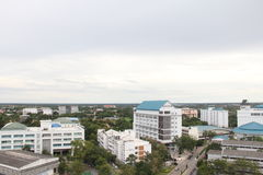 Stadskicken beskådar Fotografering för Bildbyråer