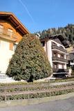 Stadslandschap - een kleurrijke boom op de achtergrond van een chalet en een heldere blauwe hemel stock foto