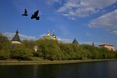 Stadslandschap met vliegende vogels en het Novospassky-klooster stock afbeeldingen