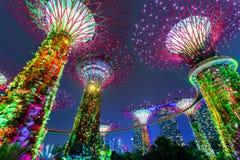 stadsnatt singapore Royaltyfria Foton